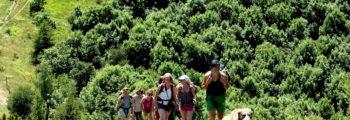 Trekking di inizio estate LIFE WOLFALPS