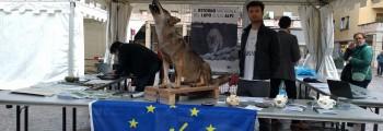 Stand LIFE WOLFALPS alla Festa dell'Europa 2016